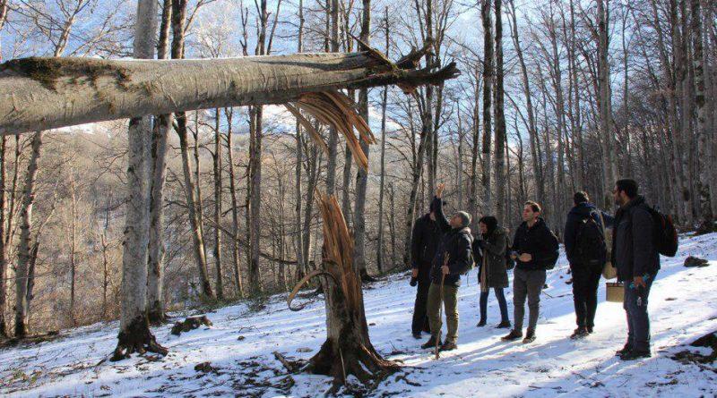 گزارش برنامه بازدید از جنگلهای مرسی سی (راش) و ییلاق خرونرو
